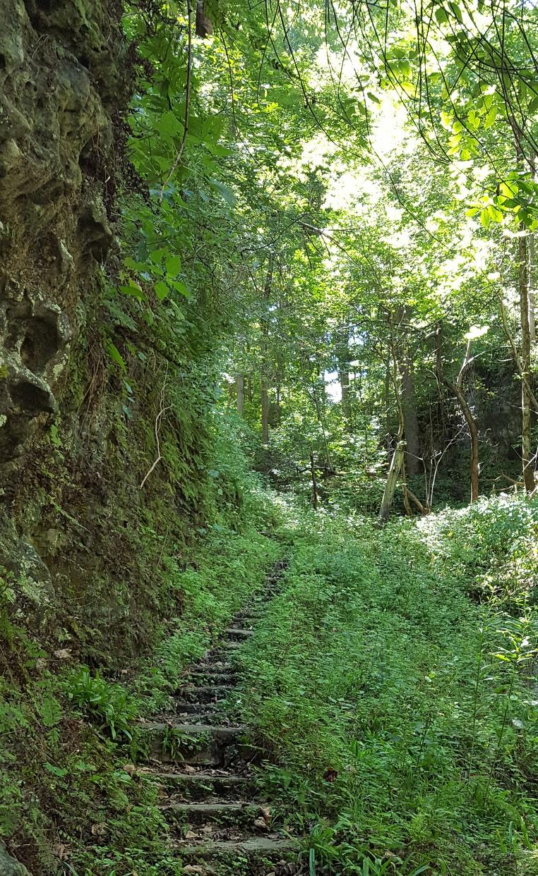 Highlands Nature Sanctuary
