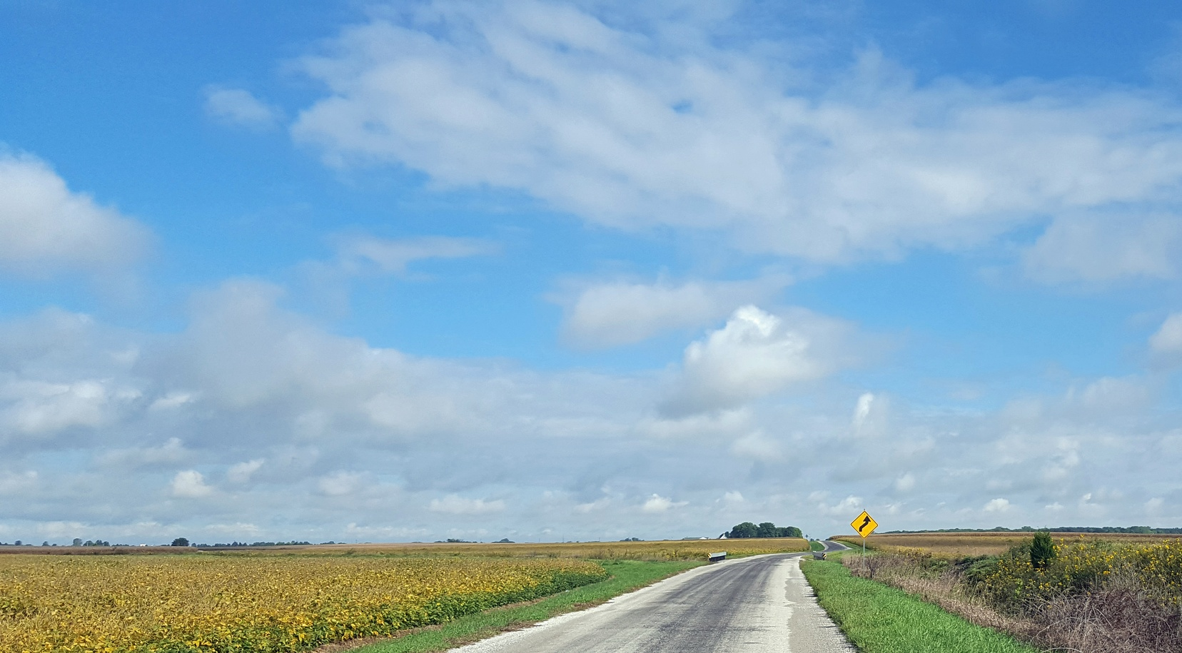 Illinois road in early fall. I spent a few hours with this view, it was lovely.