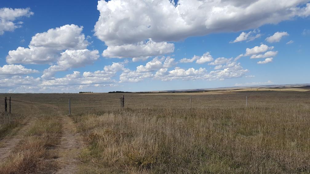 Stopped for lunch somewhere in the plains of Nebraska