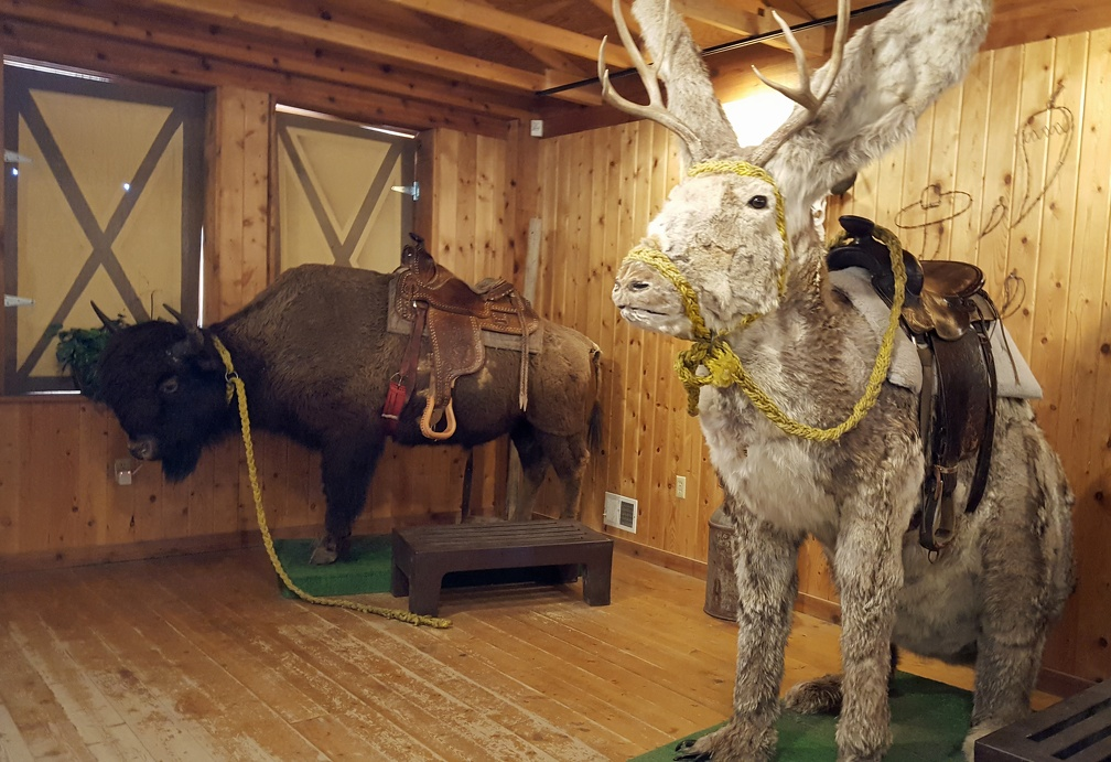 Stuffed bison and jackalope ready to ride!