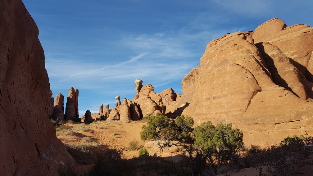 Tower Arch trail.