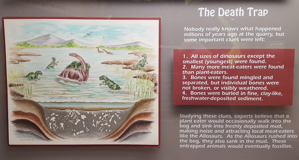 The Death Trap! Clearly we've made it to the dinosaur side. Another of my favorite illustrations in the museum.