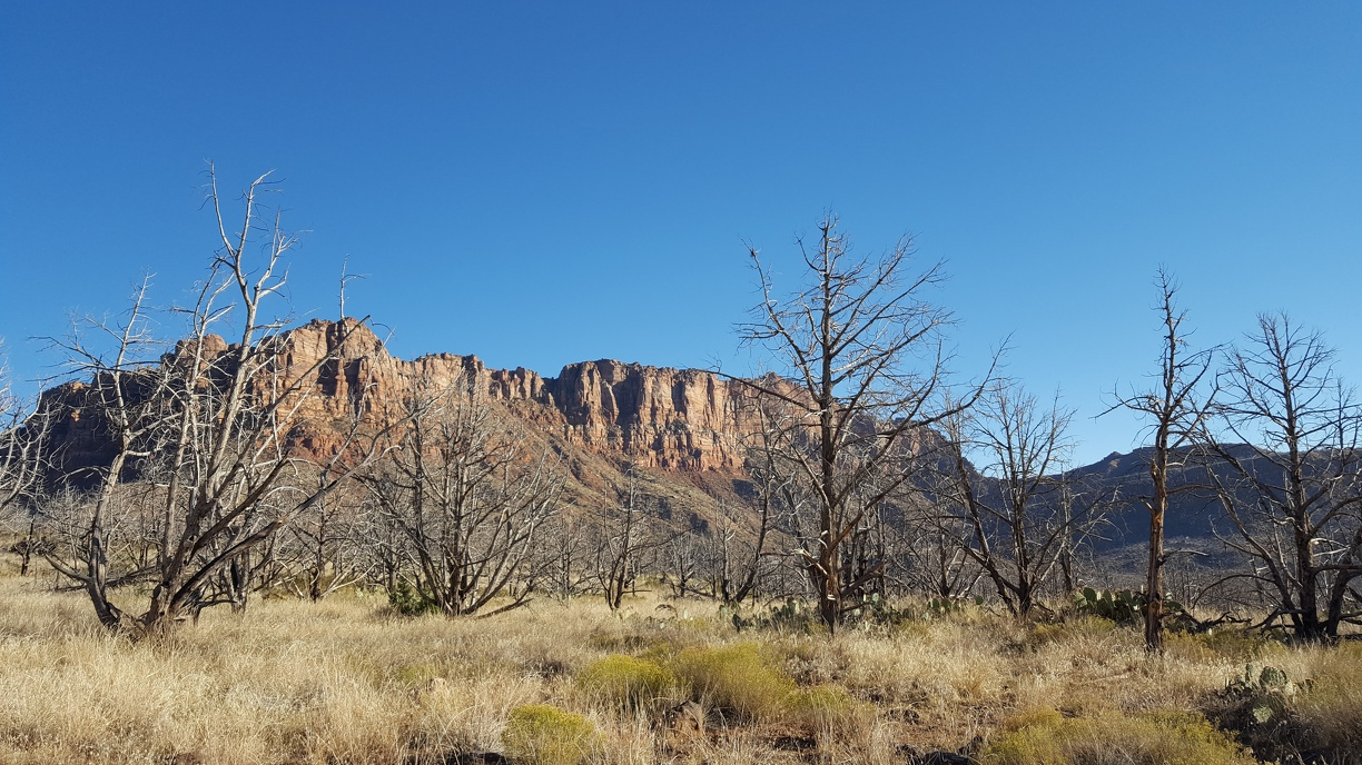 View from Kolob Terrace Road.