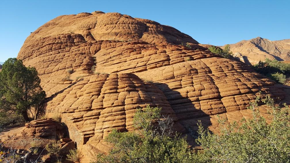 Petrified Sand Dunes.