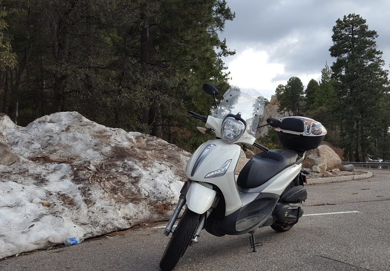 Scooter is Cold Atop Mt. Lemmon
